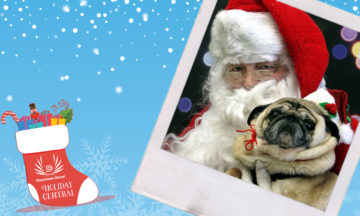 Pictures with Santa & Puppies